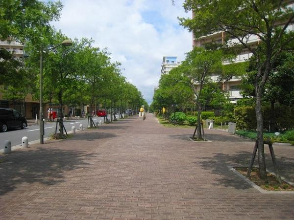マンション 西宮浜 西宮マリナパークシティ桜のまち2番館